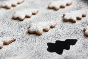 Biscuiti braduti